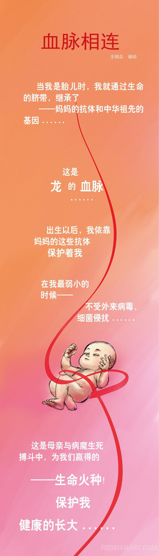 0--山东--王晓蕊--条漫1.jpg